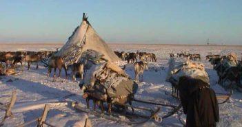 yamal anthrax arctic circle