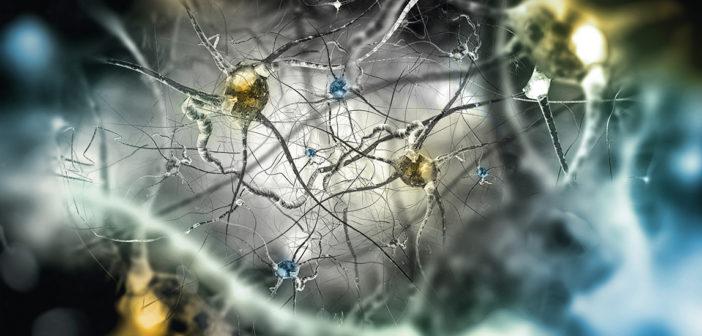 Lenalidomide alzheimer's