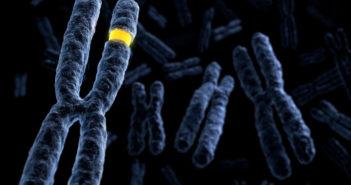 Neuropsychiatric Genetics