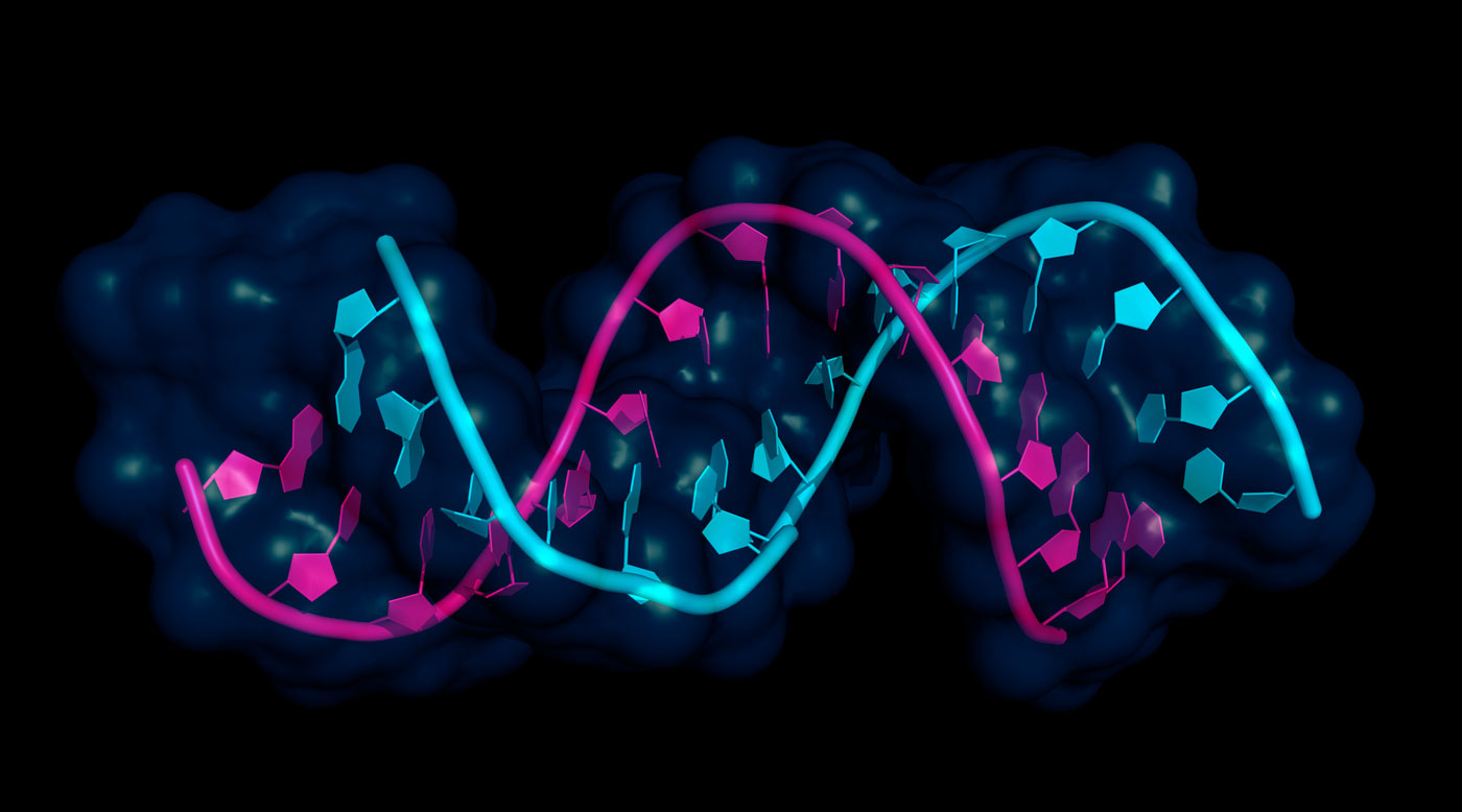 MicroRNA Exhibit Unexpected Function in Driving Cancer