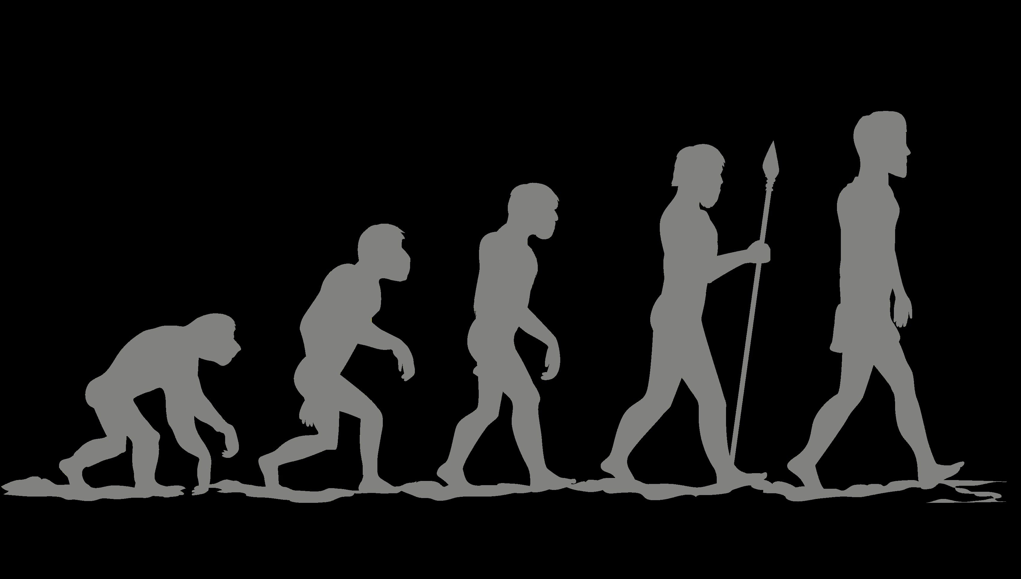 the evolution of human relations Evolution of human relations study human relations, however, was not always central to the conversation on organizational success in fact.